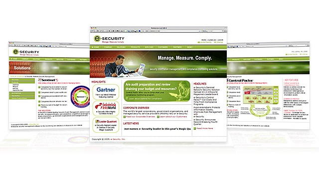 e-Security-Web-site.jpg