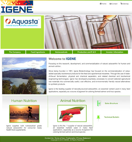 igene-website-before