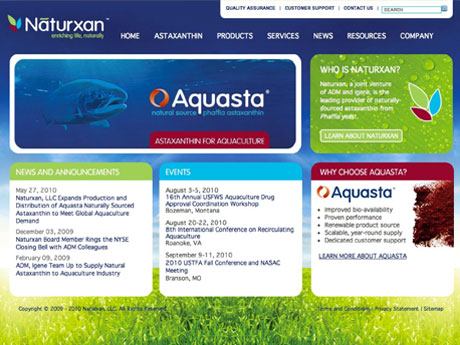naturxan-website-design.jpg