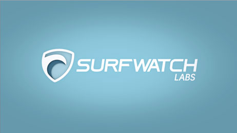 SurfWatch Cybersecurity Explainer Video