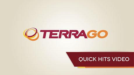 TerraGo Video Bumper Animation