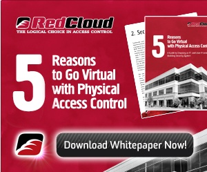 RedCloud Whitepaper Banner Ad